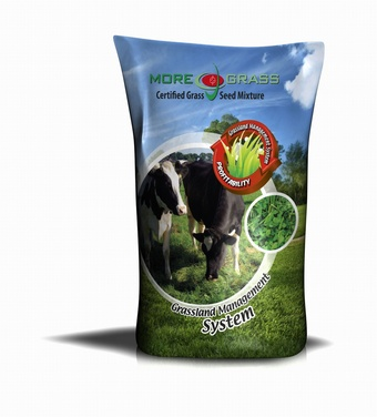 EXTRA INTAKE MG90 Chicory & Rye-grass Grass seed > Moregrass