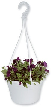 27cm Hanging Basket Hanging Baskets