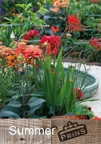 Prins Summer Bulb Catalogue Bulb Collection > - Spring & Autumn