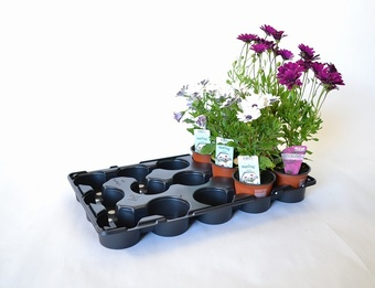 MT15v-10.5 Growers Collection > - Marketing Trays