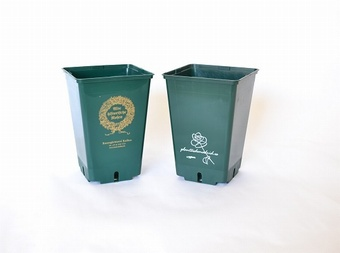 Your Logo here Personalised Pots