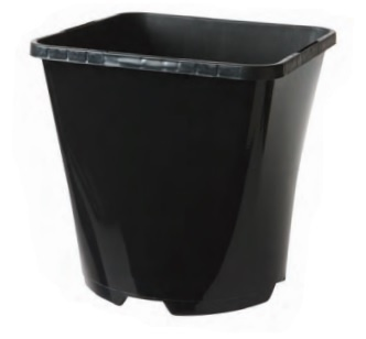 2 Litre Square/Round Container Growers Collection > - Container Pots